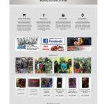 pembuatan website toko action figure - radtoys - joelouisrock - com